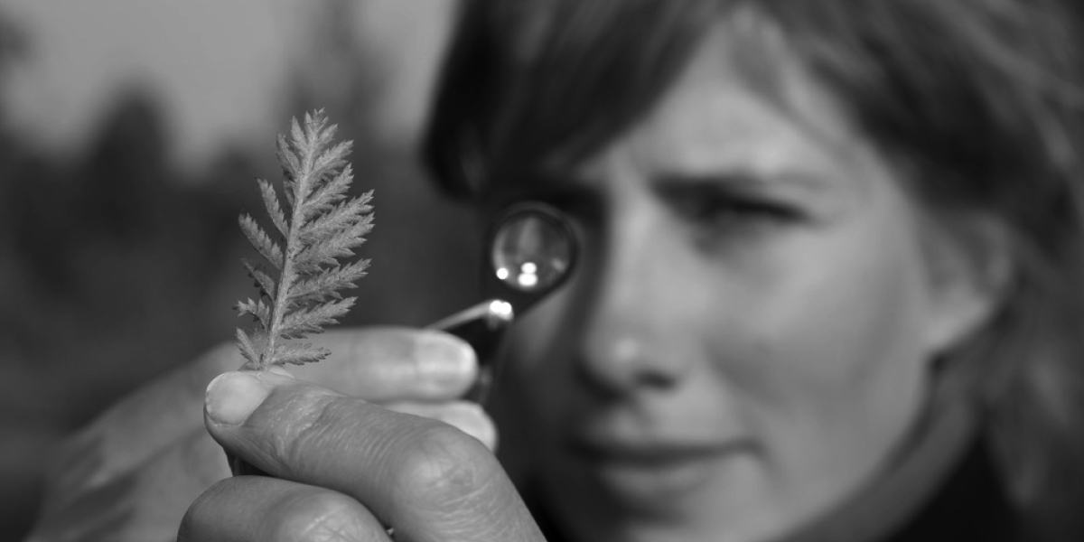 Grass-Roots-Ecology-surveys-hero-images-V2-2